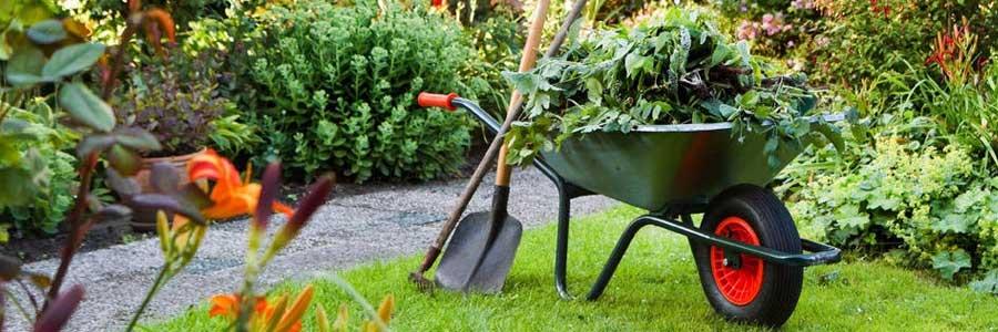 Tuin onderhoudsabonnementen Zwolle Meppel Nieuwleusen